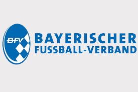 Logo BFV